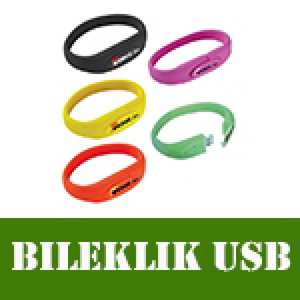 BILEKLIK_USB