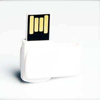 PLASTIK_USB_UD21657